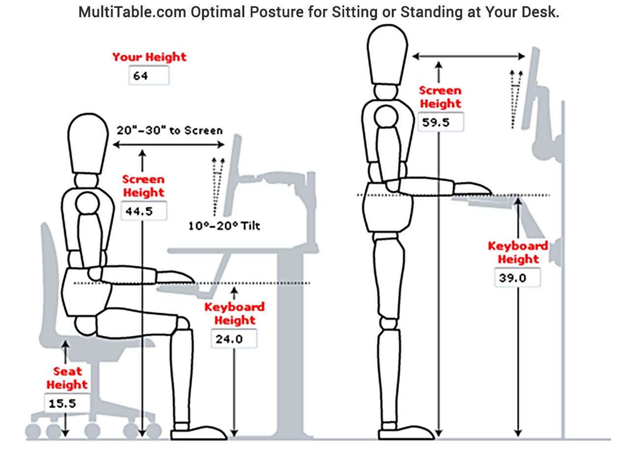 Ideal Standing Desk Posture Ergonomics MultiTable.com