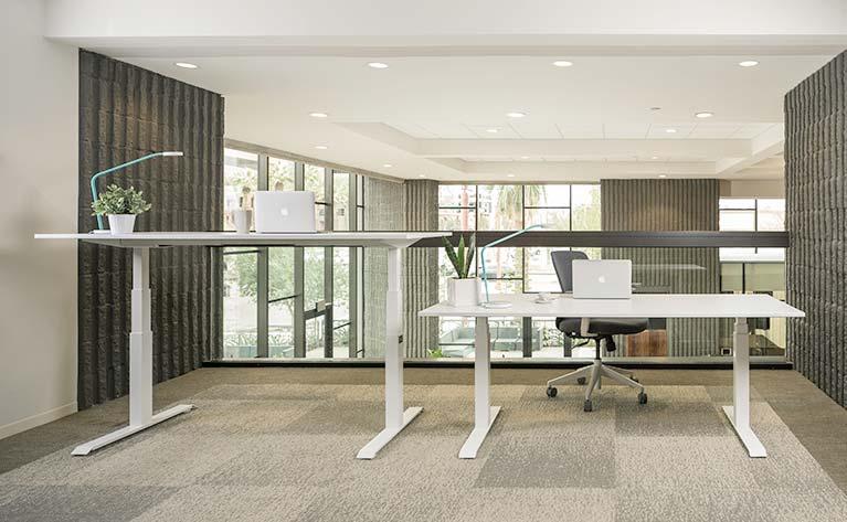 Standing Desk Gallery 49s MultiTable